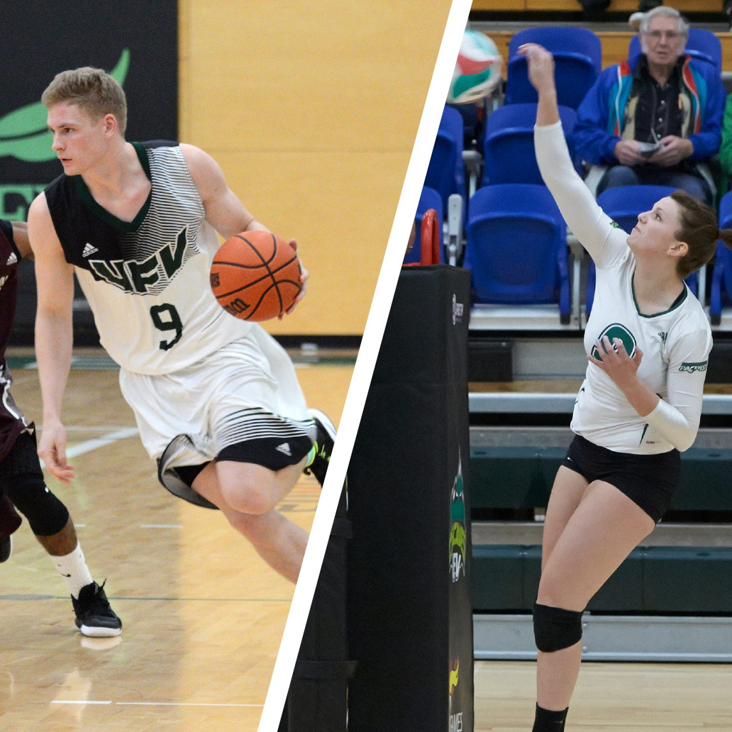 weekend preview cascades basketball volleyball teams hit the road ufv cascades. Black Bedroom Furniture Sets. Home Design Ideas